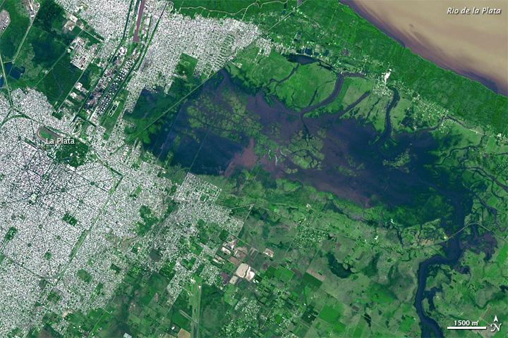 Flooding in La Plata