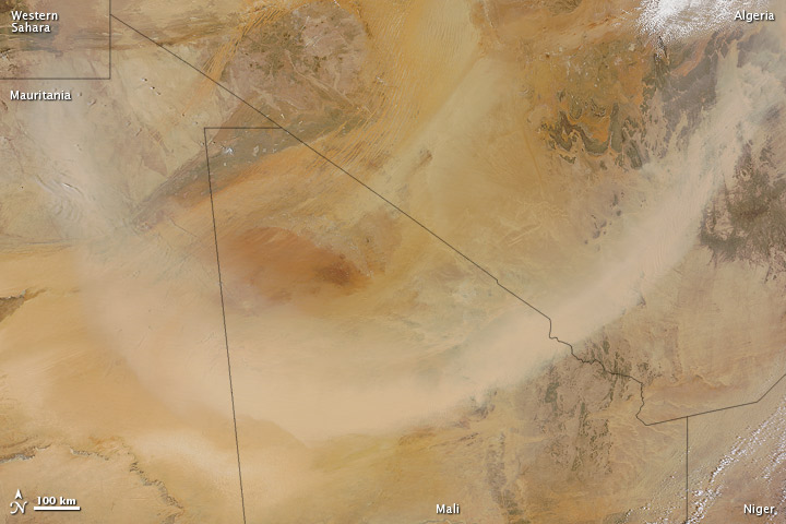 Dust Plume over the Sahara