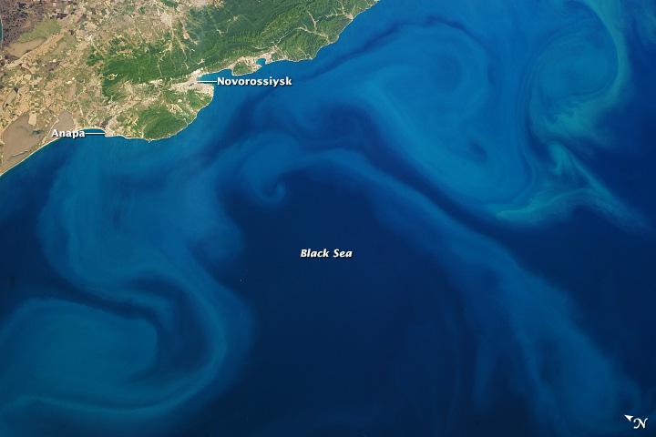 Plankton Bloom, Black Sea