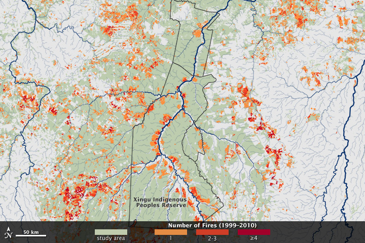 Fire in the Xingu River Basin - related image preview