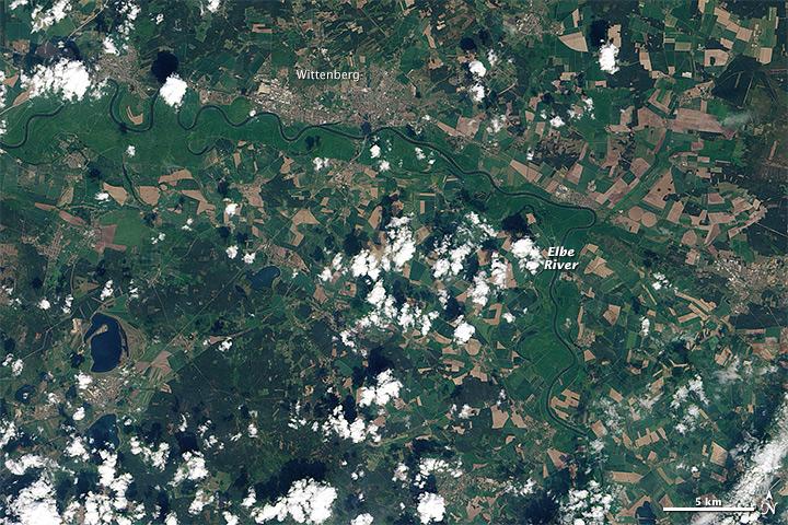 Surging Elbe in Wittenberg
