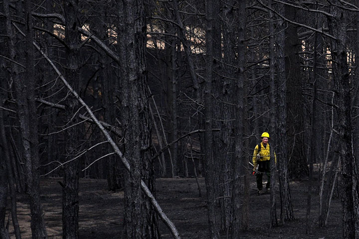 Aftermath of Colorado's Most Destructive Wildfire
