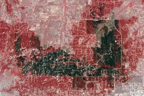Aftermath of Colorado's Most Destructive Wildfire
