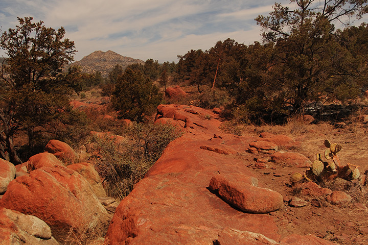 Doce Fire Burn Scar and Retardant Trail