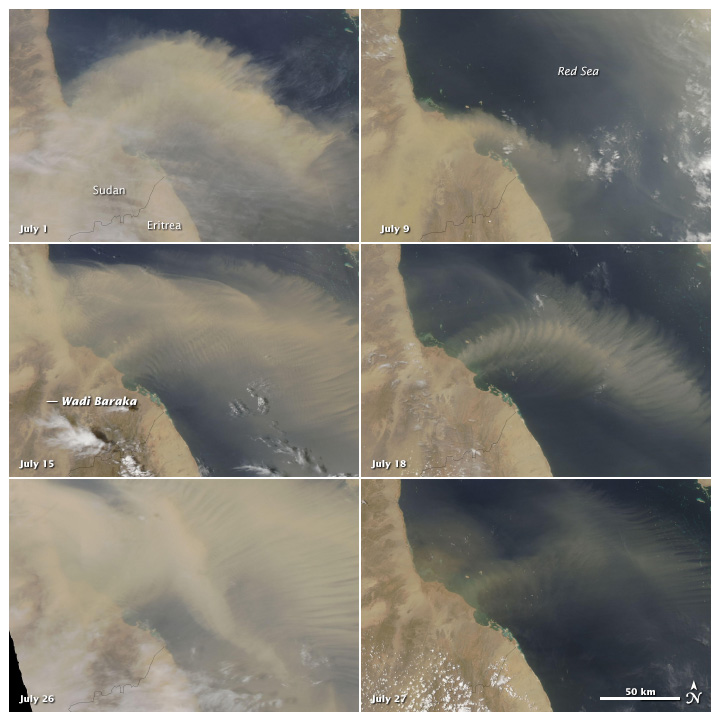 A Persistent Plume over the Red Sea