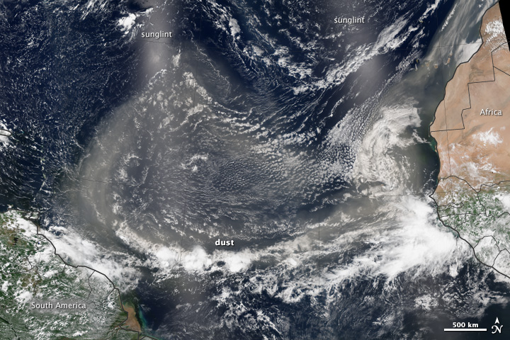 Tracking Dust Across the Atlantic - related image preview
