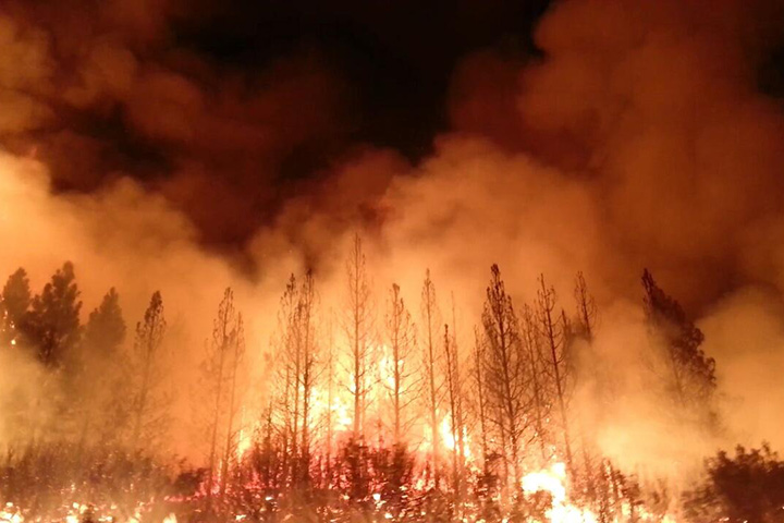 Rim Fire, California