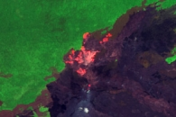 Kilauea Lava Flows Encroach on Ohia Lehua Forest
