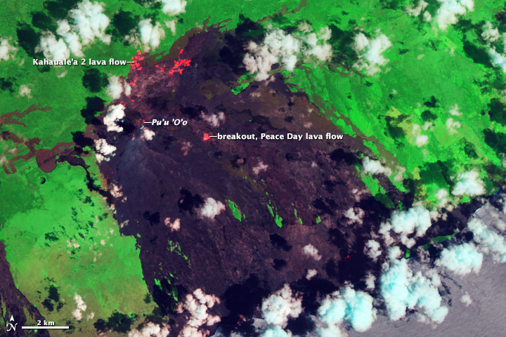 Kilauea Lava Flows Encroach on Ohia Lehua Forest - related image preview