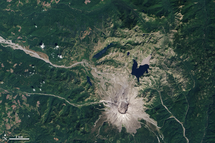 Life Reclaims Mount St. Helens