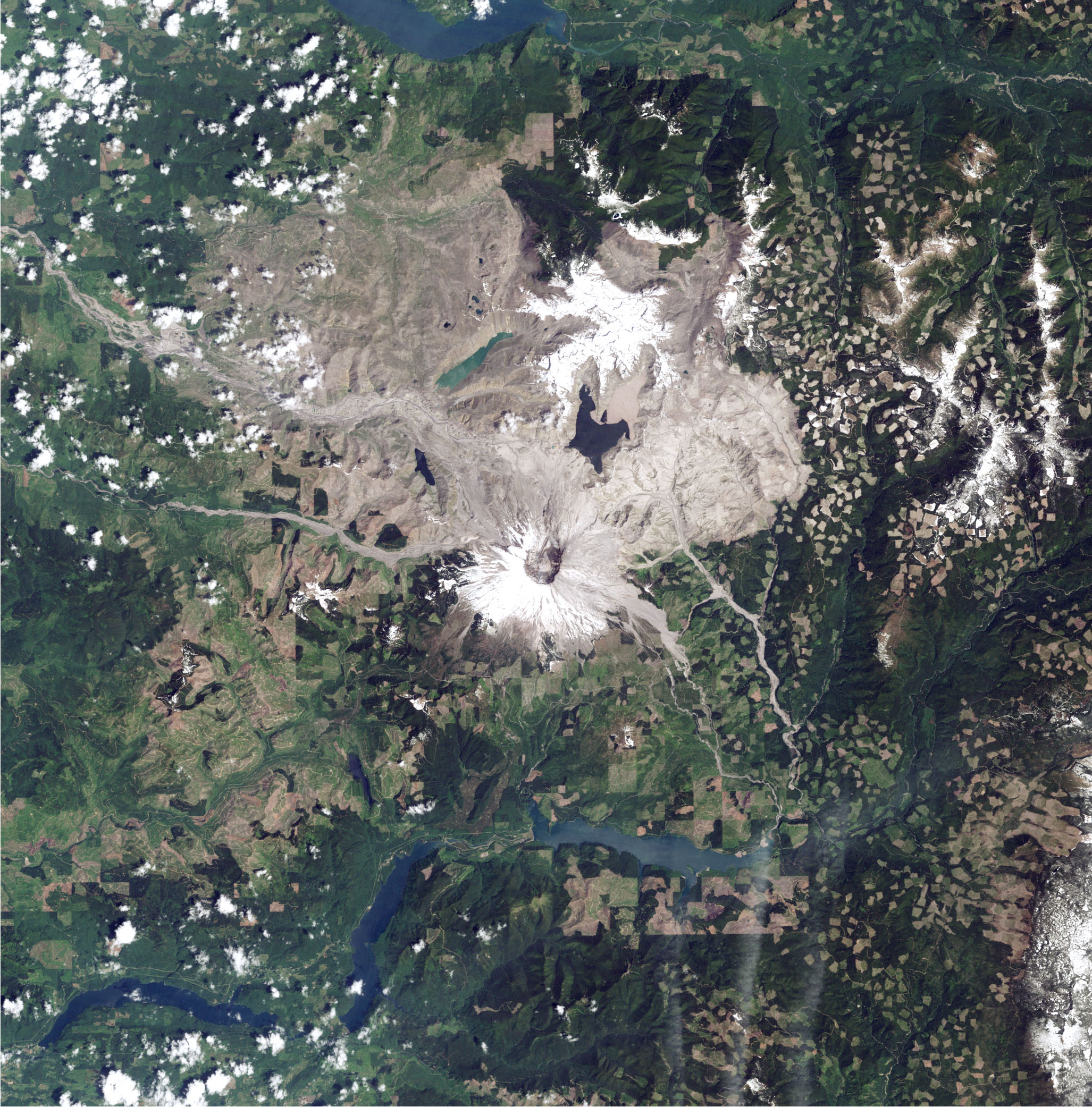 Life Reclaims Mount St Helens Image Of The Day