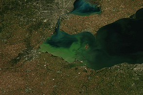 Toxic Algae in Lake Erie