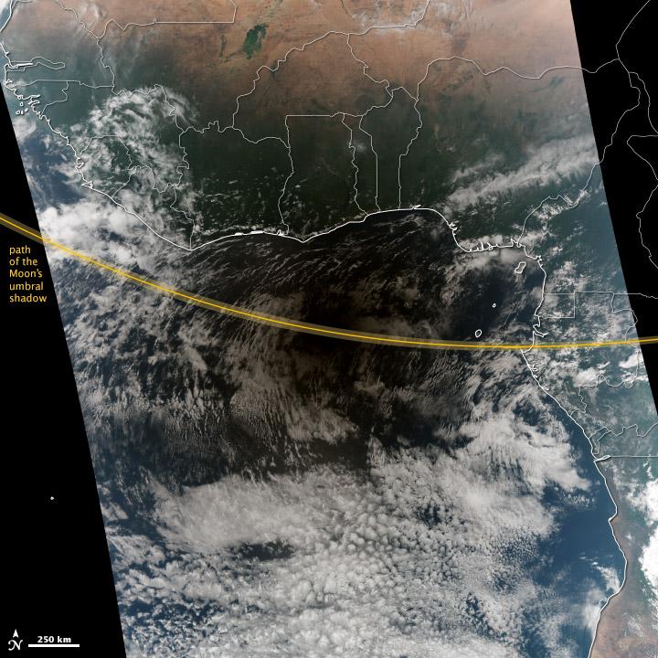 Hybrid Eclipse Shades Africa