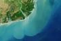 Zambezi River Delta