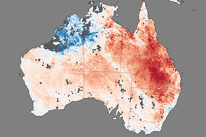 Heat Wave Stifles Australia - selected image