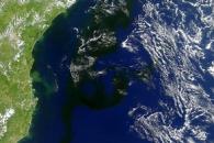 A Dark Bloom in the South Atlantic