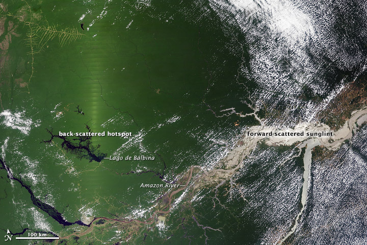 Seasonal Amazon Greening May Be a Satellite Effect
