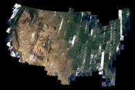 Landsat 8's First Year