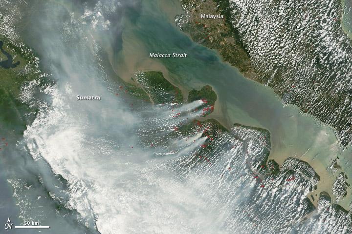 Fires Cloak Sumatra in Smoke