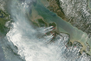 Fires Cloak Sumatra in Smoke - selected image
