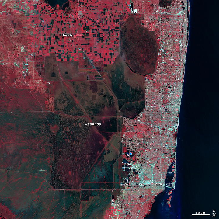 Interpretasi Citra Satelit Landsat 5 Kota Florida false color red
