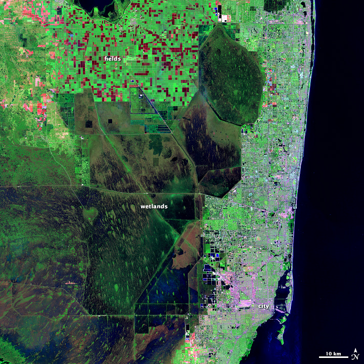 Interpretasi Citra Satelit Landsat 5 Kota Florida false green color