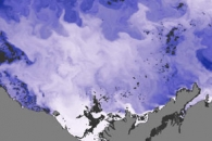 River Discharge Alters Arctic Sea Ice
