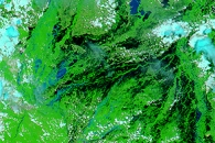 Flooding in Bolivia in False Color