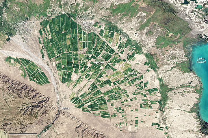 Alluvial Fan in Kazakhstan