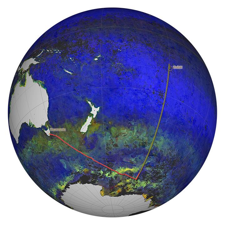 Cruising for Ocean Data