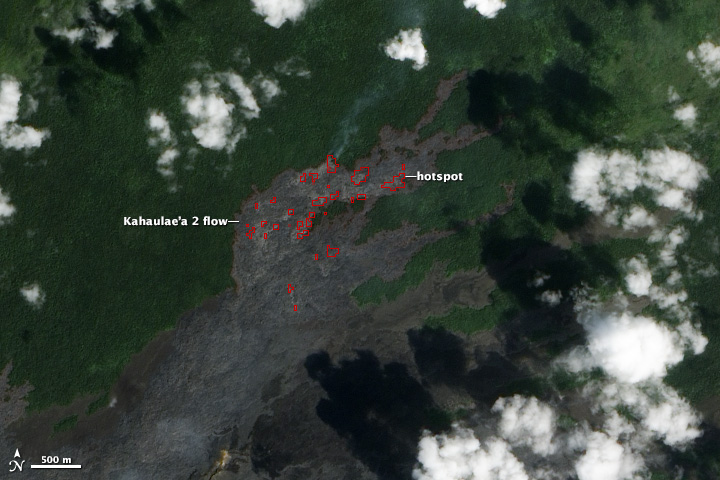 Kilauea Lava Chews Through More Forest