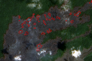 Kilauea Lava Chews Through More Forest - selected image