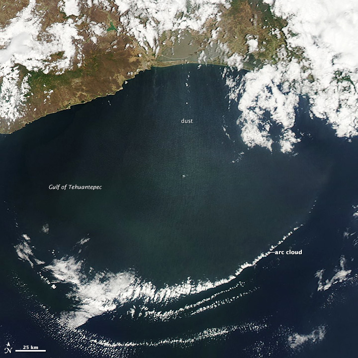 Tehuano Winds