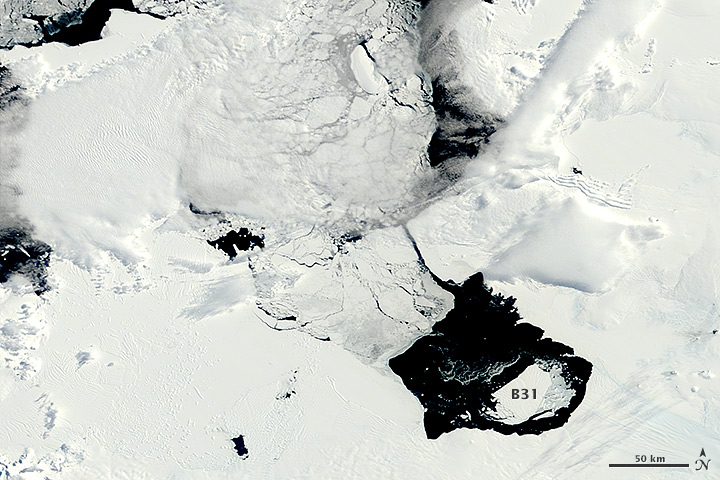 Drifting with Ice Island B31