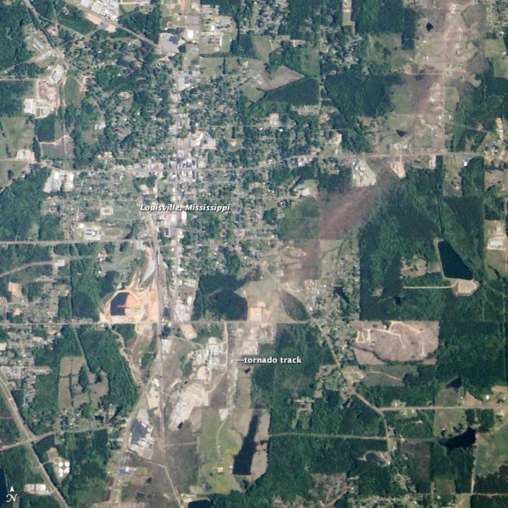 Tornado Track in Louisville, Mississippi