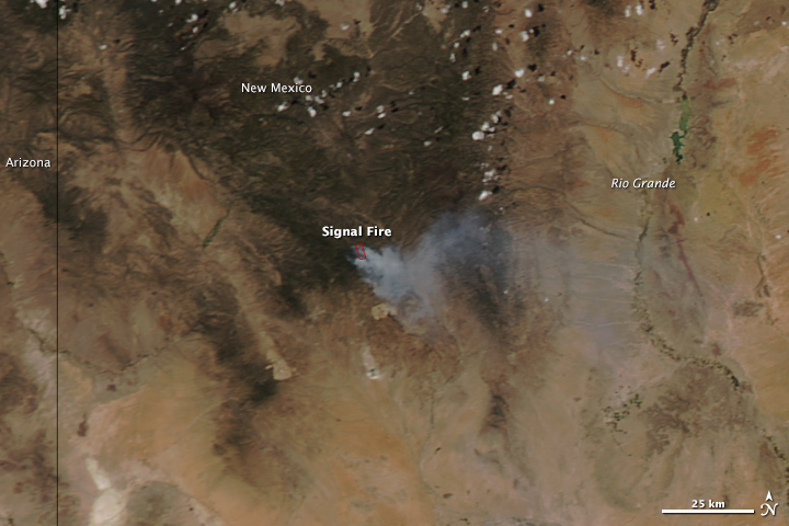 Signal Fire, New Mexico - related image preview