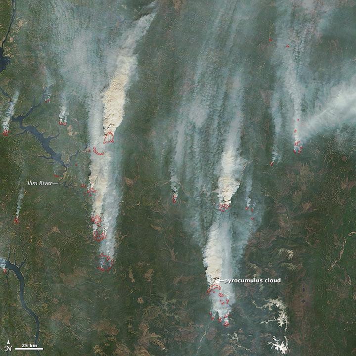 Wildfires in Irkutsk