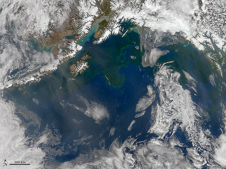 Springtime in the Gulf of Alaska