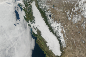 Winter Fog Becoming Rare in California  - selected image