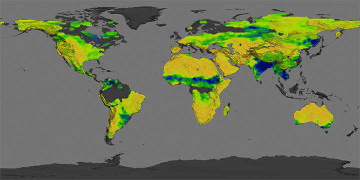 Looking for Salt, Seeing Soil Moisture - related image preview