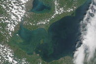 Algae Bloom on Lake Erie