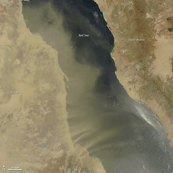 Dust Blowing across the Red Sea