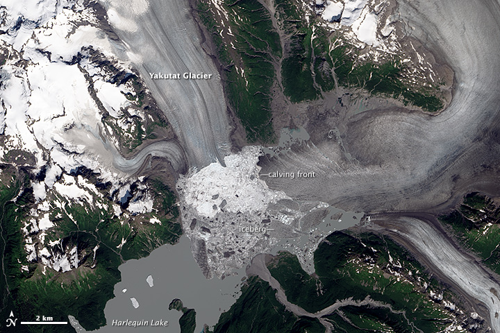 Retreat of Yakutat Glacier