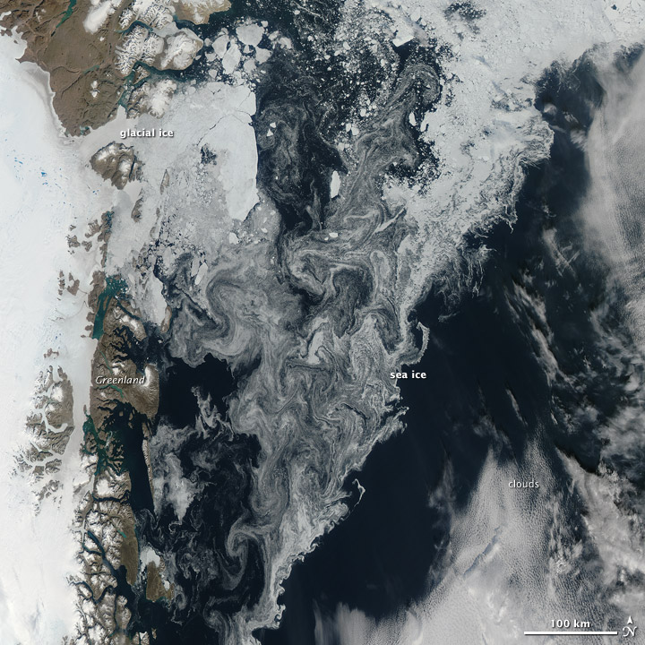 Ice in the Greenland Sea