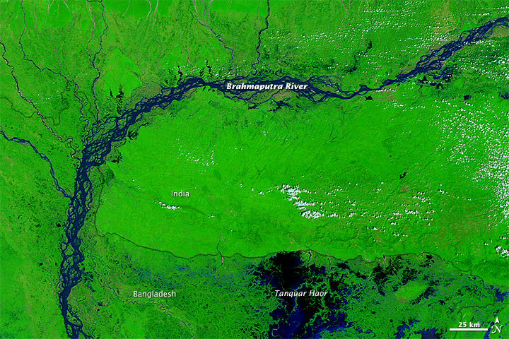 Flooding in Bangladesh and India