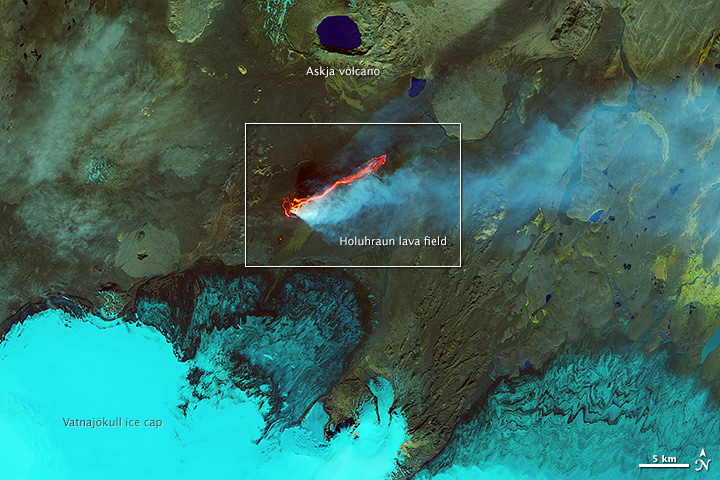 Roiling Flows on Holuhraun Lava Field