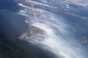 Amazon Forest Fires - selected image