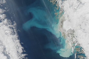 Sediment Plumes Around Greenland