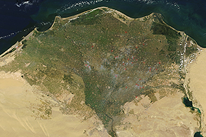 Fires in the Nile River Delta