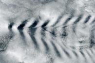 Cloud Wakes behind Amsterdam Island